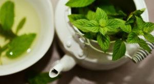 Αρωματικά & Βότανα